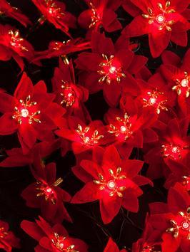 littlewoods chirstmas lights